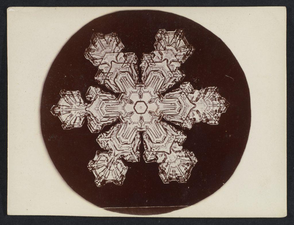 Wilson Alwyn Bentley - Snow_Crystal MET_DP351899